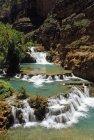 Vista panoramica di alberi e Havasu Creek — Foto stock
