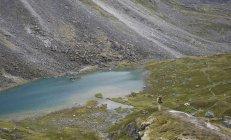 Excursionista de mujer con vistas a un lago alpino durante un viaje de mochilero a Reed lagos en las montañas Talkeetna cerca Palmer, Alaska agosto de 2011. - foto de stock