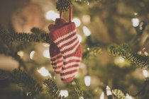 Calzini di Natale decorazione su un albero di Natale — Foto stock