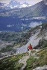 Жінка виходи на вид на льодовик пік пустелю від павук розрив Фелпс Creek Trail, 14.2-мильну out і назад, поза Leavenworth, Вашингтон вересня 2011 року. Фелпс крик призводить до бази павук льодовик, де ви налаштувати табір і похід — стокове фото