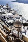 Mulas andando pelas ruas de Santorini, Grécia — Fotografia de Stock