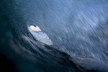 View from inside barreling wave at Port Hueneme Beach in city of Port Hueneme, California — Stock Photo