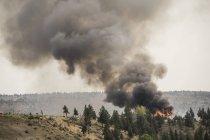 Fumaça de um incêndio florestal enche o ar em Oregon, EUA — Fotografia de Stock
