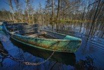 Живописный вид старой лодке и садов кипариса в Южной Каролине — стоковое фото
