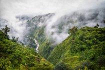 Valle del fiume sul lato del vulcano Pos, Costa Riva — Foto stock