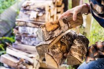 Woman Hands Holding Firewood — Stock Photo