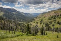 Continental Divide In Backcountry Montana — Foto stock