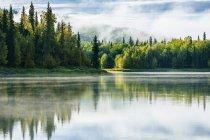 Morning Mist On Zlake Near Talkeetna, Alaska, Usa — Stock Photo