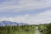 Nabesna Road in Wrangell-St. Elias National Park and Preserve, Alaksa with Mentasta Mountains in Background — Stock Photo