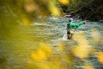 Un moucheur dans une rivière entourée de feuillage d'automne à Revelstoke, en Colombie-Britannique. — Photo de stock