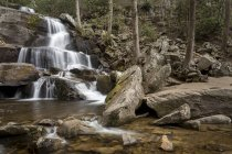 Great Smoky Mountains National Park — стоковое фото