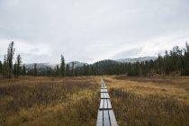 Caminho para as desconhecidas montanhas do Parque Nacional de Ergaki, na Sibéria — Fotografia de Stock