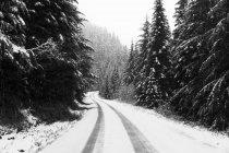 Estrada de montanha de neve — Fotografia de Stock