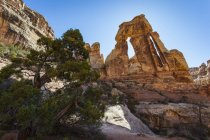 Druid Arch Rock Formations — Stock Photo