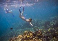 Дві молоді жінки підводним плаванням в океані. — стокове фото