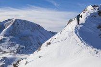 Veduta posteriore della donna che sale su Trico Peak, Foresta Nazionale di San Juan, Colorado. — Foto stock