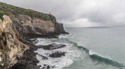Taiaroa Head on the Otago Peninsula, New Zealand — Stock Photo