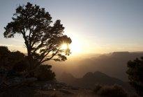 Blick auf den Sonnenuntergang der Grand Canyon von Desert View Watchtower, South Rim — Stockfoto