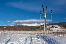 Skis de fond avec les montagnes en arrière-plan — Photo de stock