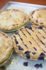 Torte di frutta appena sfornati alle Shamane Bake Shoppe, Boulder, Colorado — Foto stock