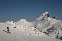 Mann, Schneeschuhwandern bergauf im Garibaldi Provincial Park mit Blick auf den Berg Black Tusk — Stockfoto