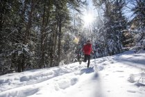 A male athlete running on a trail covered in snow on a bright sunny winter day. — Stock Photo