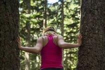 Вид сзади женщины в верхней части бака стоя между деревьев в лесу, штат Snoqualmie, Вашингтон, США — стоковое фото