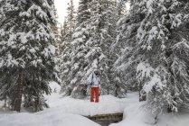 Frau in Schneeschuhen geht durch verschneiten Wald — Stockfoto