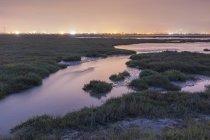 Відновлений Марш, колишній сіль ставок з містом у тлі, що Іден посадки, Hayward, Каліфорнія, США — стокове фото