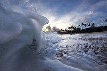 Foam wave approaching shoreline at sunrise on north shore of Oahu — Stock Photo
