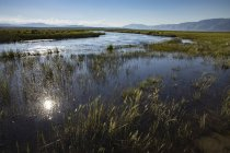 Ciudades de las Sierras orientales de junio lagos y Mammoth Lakes - foto de stock