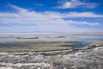 Laguna Chaxa outside of San Pedro de Atacama, Chile — Stock Photo