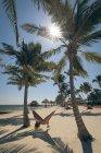 Молодая женщина, лежа в гамаке между пальмы на пляже — стоковое фото