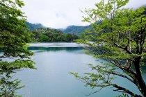 Красивые природные пейзажи с озера, Лос Лагос тропа, Huerquehue Национальный парк, Pucon, Араукании регион, Чили — стоковое фото