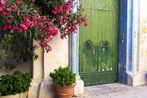 Colorful doorway with flowers in historic walled city of Medina, Malta — Stock Photo