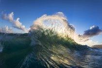 Onda del océano, rompiendo hacia la orilla por la mañana temprano hawaiano luz. Del lado este de Oahu - foto de stock