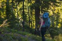 Вид збоку жінка з рюкзака авторитетом у зеленій гущавині лісів, Snoqualmie, США — стокове фото