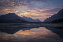 Promenade des champs de glace — Photo de stock