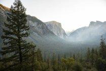 Vue de la vallée d'Yosemite du Tunnel vue au lever du soleil. Californie, é.-u. — Photo de stock
