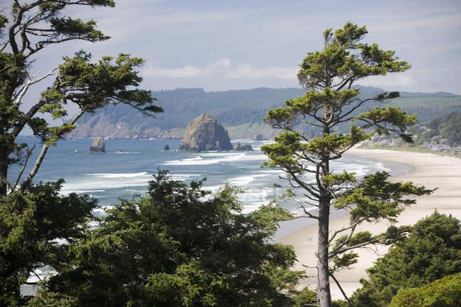 Overlooking view of scenic sandy beach on pacific ocean coast, Oregon — Stock Photo
