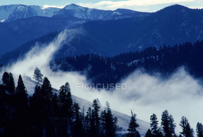 Великий Creek Долина в горах Bitterroot — стокове фото