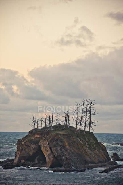 Скво остров Sunset Bay Park, штат Орегон, США — стоковое фото