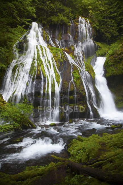 Каскад водопадов через пышные покрытые скалы в Panther-Крик-Фолс в Карсон, Вашингтон — стоковое фото