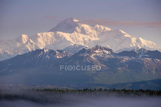 Fina capa de niebla cubierta sobre árboles de hoja perenne con montañas en el fondo al atardecer, Parque Nacional de Denali, Alaska, Estados Unidos - foto de stock