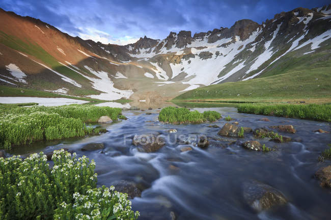 Wildflowers and a stream coming from upper Blue Lake in the Mount Sneffels Wilderness near Ouray, Colorado — Stock Photo