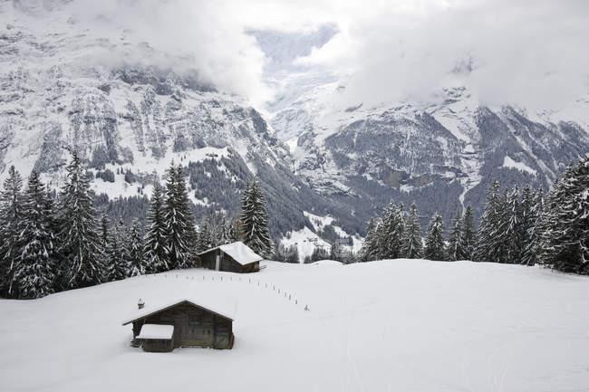Покрытые снегом горные хижины и пастбища вблизи Гриндельвальда, Jugfrau область, Швейцария — стоковое фото