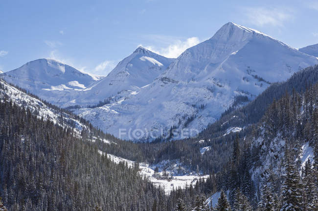 Blick auf die Berge der Elch aus der Himbeere Creek Drainage, White River National Forest, Colorado — Stockfoto