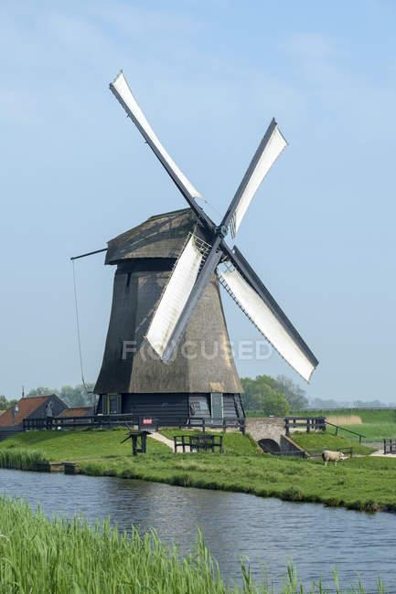 Ветряная мельница на польдеры вблизи деревни Шермерхорн, Северная Голландия, Нидерланды — стоковое фото