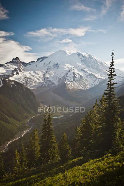 Северо лицом гору Ренье, Уинтроп ледник и Долина реки белый — стоковое фото