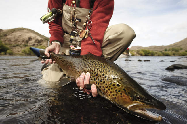 Woman holding large trout above water, Rio Limay in Patagonia, Argentina. — Stockfoto